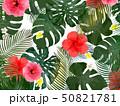 モンステラ プルメリア 葉のイラスト 50821781