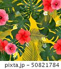 モンステラ プルメリア 葉のイラスト 50821784