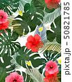 モンステラ プルメリア 葉のイラスト 50821785