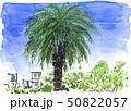 靭公園19518pix7 50822057
