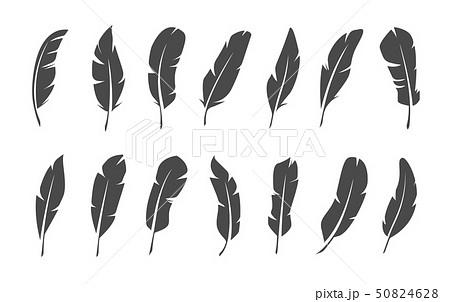 Set of black feather symbols on white background. 50824628