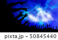 ライブ会場とオーディエンス 50845440