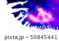 ライブ会場とオーディエンス 50845441