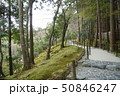 日本庭園 50846247