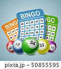 Bingo Ball and tickets background. Vector illustration 50855595