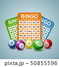 Bingo Ball and tickets background. Vector illustration 50855596
