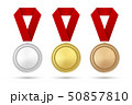 ベクタ ベクター ベクトルのイラスト 50857810