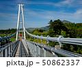 新緑の九重夢大吊橋 50862337
