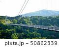 新緑の九重夢大吊橋 50862339