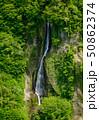 新緑に囲まれた震動の滝(雌滝) 50862374