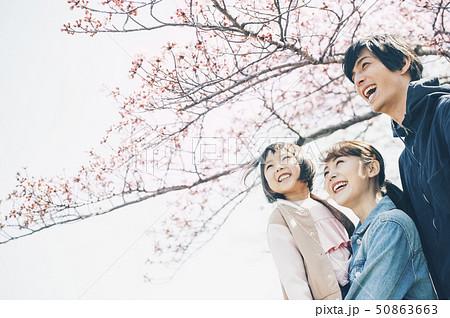 桜 春 親子 50863663