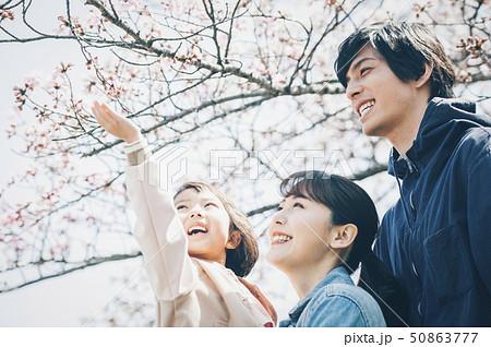 桜 春 親子 50863777