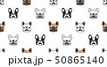 わんこ 犬 フレブルのイラスト 50865140