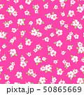 植物 花 ハイビスカスのイラスト 50865669