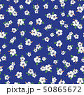 植物 花 ハイビスカスのイラスト 50865672