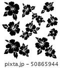花 花柄 ハイビスカスのイラスト 50865944
