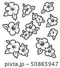 花 花柄 ハイビスカスのイラスト 50865947