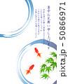 暑中見舞い 金魚 もみじ 背景  50866971