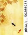 暑中見舞い 金魚 和紙 背景  50866988