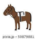 競馬のイラスト。馬具を付けて走る準備をしている馬。 50879881