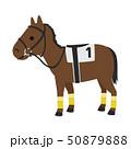 競馬のイラスト。サポーターやテーピングなど、足を保護するバンテージという馬具を付けた馬。 50879888