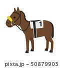 競馬のイラスト。影などに驚かないよう下方を見えにくくして前方に意識を集中させるシャドーロールという馬 50879903