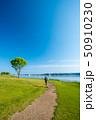 ノルディックウォーキング 公園 初夏の写真 50910230