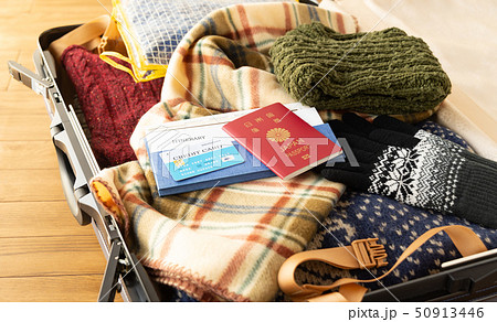 スーツケース 海外旅行保険付クレジットカード 冬 旅行 出張 パスポート セーター 50913446