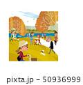 池のある公園の秋 50936999
