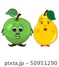 りんご リンゴ 林檎のイラスト 50951290