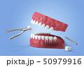 歯科 歯 器具のイラスト 50979916