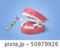 メディカル 医療 歯のイラスト 50979926
