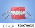 メディカル 歯 器具のイラスト 50979935