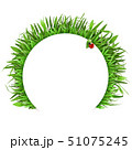 Vector Grass with White Label 51075245