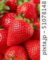 いちご イチゴ 果物の写真 51078148