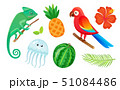 Exotic Animals, Fruits and Plants, Summer Vacation 51084486
