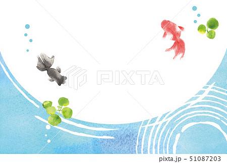 金魚 夏イメージ 背景イラスト 51087203