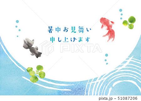 暑中お見舞い 金魚 51087206