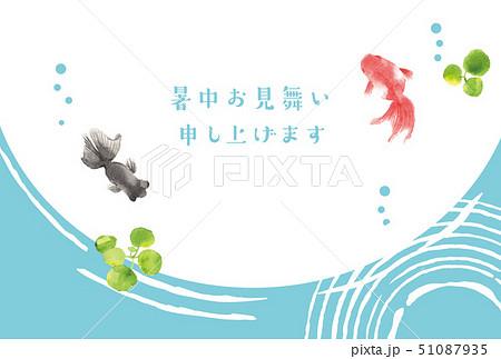 暑中お見舞い 金魚 51087935
