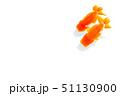 金魚 らんちゅう 51130900