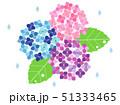 紫陽花19 51333465