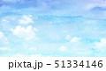 51334146