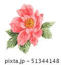 rose19522pix7 51344148