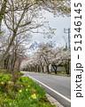 長野県 白馬村 風景 51346145