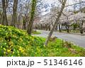 長野県 白馬村 風景 51346146