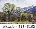 長野県 白馬村 風景 五龍岳 51346162
