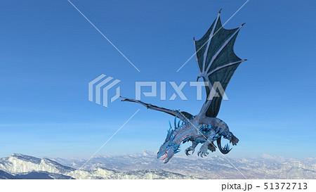 ドラゴン 51372713
