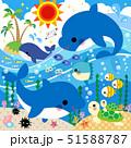 海のなかまたち(線なし) 51588787