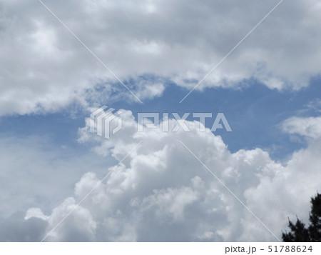 春の稲毛海浜公園の青空と白雲 51788624