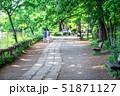道 公園 ベンチの写真 51871127